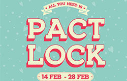 ALL YOU NEED IS PACT LOCK
